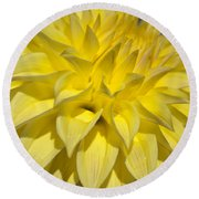 Sunshine Dahlia Round Beach Towel