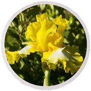 Sunshine Iris Round Beach Towel