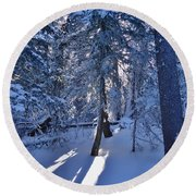 Sunshine Through Winter Trees Round Beach Towel