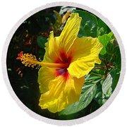 Sunshine Yellow Hibiscus With Red Throat Round Beach Towel