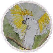 Suphar Crested Cockatoo Round Beach Towel