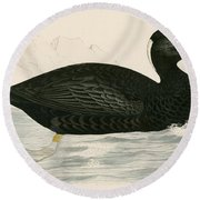 Sure Scoter Round Beach Towel