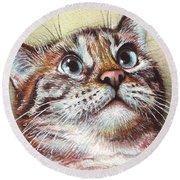 Surprised Kitty Round Beach Towel by Olga Shvartsur
