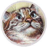 Surprised Kitty Round Beach Towel by Olga Shvartsur