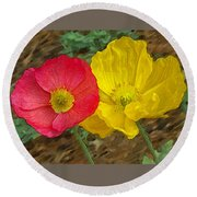 Surprised Poppies Round Beach Towel