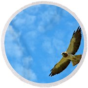 Swainson's Hawk Snake River Birds Of Prey Natural Conservation Area Round Beach Towel