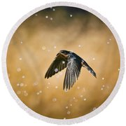 Swallow In Rain Round Beach Towel by Robert Frederick