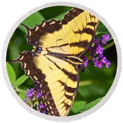 Swallow Tail Butterfly Round Beach Towel