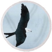 Swallow Tailed Kite Round Beach Towel