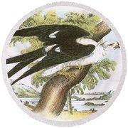 Swallow-tailed Kite Round Beach Towel