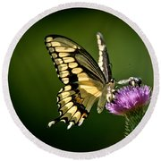 Swallowtail And Friends Round Beach Towel
