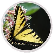 Swallowtail Butterfly And Milkweed Flowers Round Beach Towel