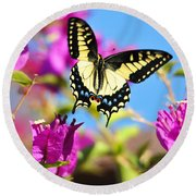 Swallowtail In Flight Round Beach Towel