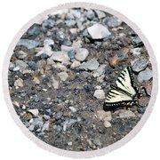 Swallowtail Round Beach Towel