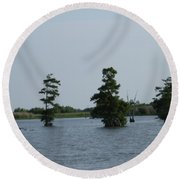 Swamp Tall Cypress Trees  Round Beach Towel