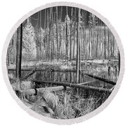 Swamp Trees Round Beach Towel