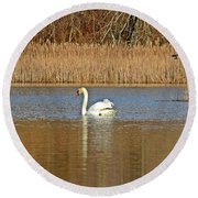 Swan And Swallow Round Beach Towel