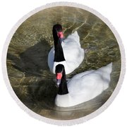 Swan Duo Round Beach Towel by Marty Koch