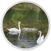 Swan Family Squared Round Beach Towel