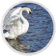 Swan Feather Round Beach Towel