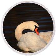 Swan Grooming Round Beach Towel
