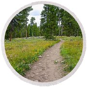 Swan Lake Trail In Grand Teton National Park-wyoming Round Beach Towel