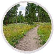Swan Lake Trail In Grand Teton National Park-wyoming Round Beach Towel