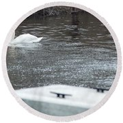 Swan On The Water Round Beach Towel