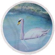 Swan Study Round Beach Towel