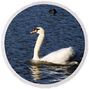 Swan Swim Round Beach Towel