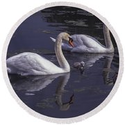 Swans And Signet Round Beach Towel