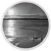 Swans Sunrise Bw Round Beach Towel