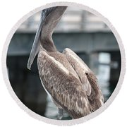 Sweet Brown Pelican - Digital Painting Round Beach Towel