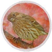 Sweet Female House Finch 3 - Digital Paint Round Beach Towel