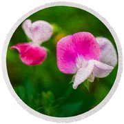 Sweet Pea Blossoms Round Beach Towel