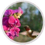 Sweet Pea Hummingbird Round Beach Towel