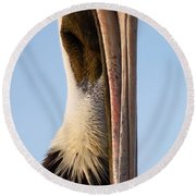 Sweet Pelican Face Round Beach Towel