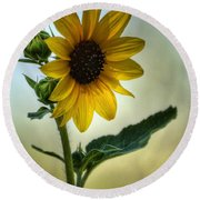 Sweet Summer Sunflower Round Beach Towel