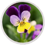 Sweet Violet Round Beach Towel