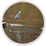 Sweetwater Creek Heron Round Beach Towel