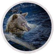 Black Bear On Blue Round Beach Towel