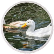 Swimming In The Pond Round Beach Towel