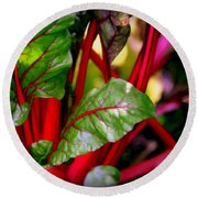Swiss Chard Forest Round Beach Towel