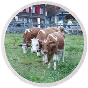 Swiss Cows Round Beach Towel