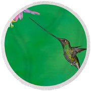 Sword-billed Hummer Round Beach Towel