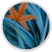 Sycamore Leaf And Sotol Plant Round Beach Towel