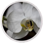 Symphony White Orchid Round Beach Towel