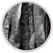 Ta Prohm Roots And Stone 04 Round Beach Towel