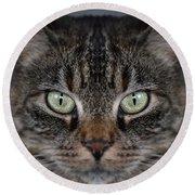 Tabby Cat Face Round Beach Towel