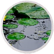 Tadpole Haven Round Beach Towel by Frozen in Time Fine Art Photography